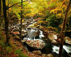 Appalachian Trail Memories
